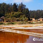 the salt of Cahuil pichilemu