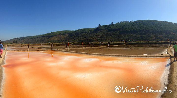 andar nos pântanos de sal de Cahuil