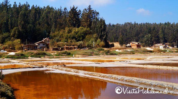o sal da Cahuil Pichilemu