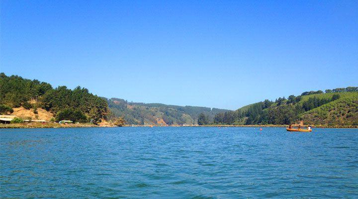 lagoon boat ride Cahuil pichilemu